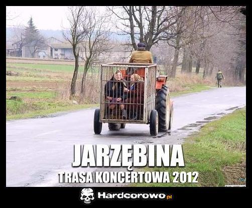 Jarzębina - 1