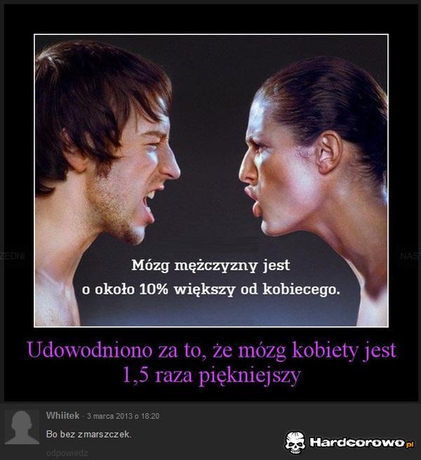 Mózg kobiety - 1