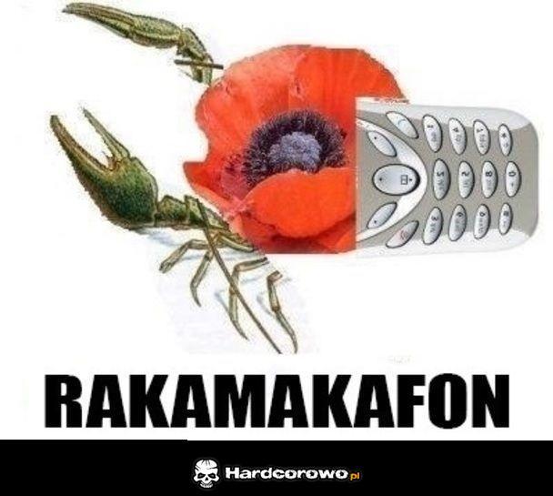 Rakamakafon - 1